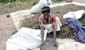 Apiole packing chia seeds in Kiryandongo. Picture by Sylvia Katete_adjusted.jpg