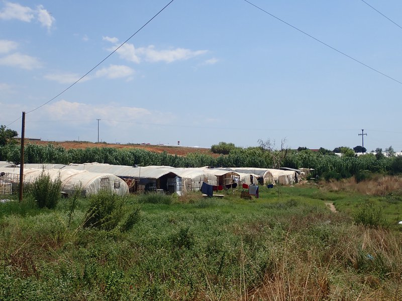 Barangas  Plastic tent cities for migrant workers.jpg