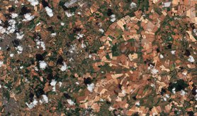 Dry fields, Wiltshire, in satellite image, 30 July 2018