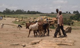 Addis Ababa and the World Food Programme in rural Ethiopia