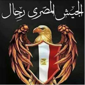 Hawk insignia