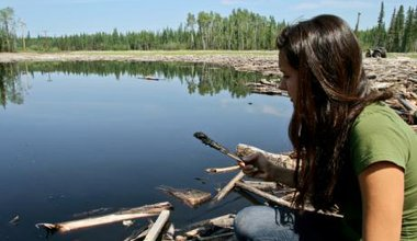 Woman holds an oil-covered branch in front of an oil spill