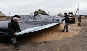 Russian farmers in Novosibirsk work to cover their grain harvest from the rain.