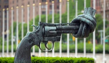 """""""The Knotted Gun"""""""