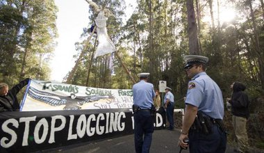 Policeman in Tasmania approaching a protest with banners in the forest