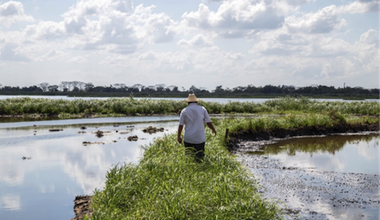 Community member Rubicel walks on raised earth formed by the 2013 oil well explosion in Oxiacaque. Author's photo.