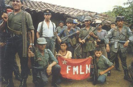 fmln_0.jpg
