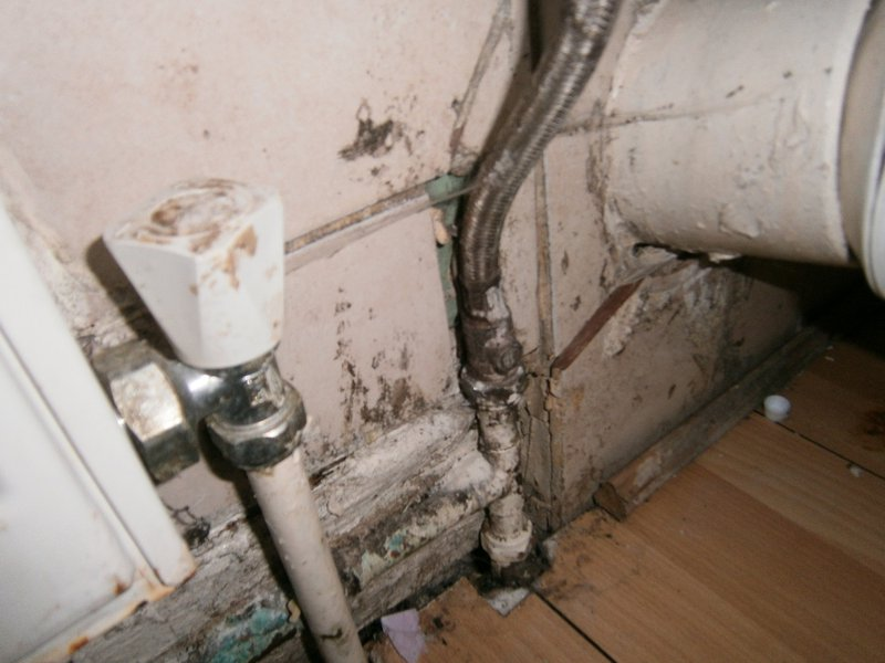 mould%20small.jpg