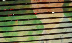 Woman below venetian blinds covered by Assad photo in office in Damascus